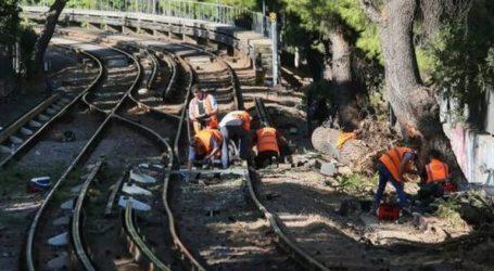 Έπεσε δέντρο στις γραμμές του ΗΣΑΠ μεταξύ της «Νερατζιώτισσας» και του «Αμαρουσίου»