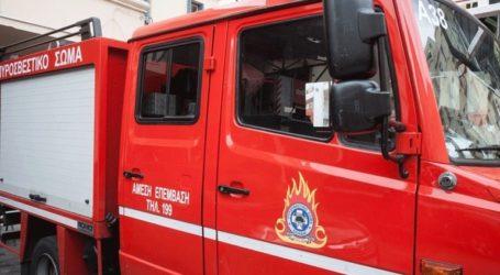 Υπό μερικό έλεγχο η πυρκαγιά στο Δίστομο Βοιωτίας