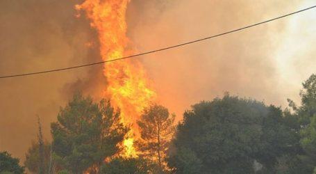 Φωτιά στη Φιλιππιάδα Πρέβεζας