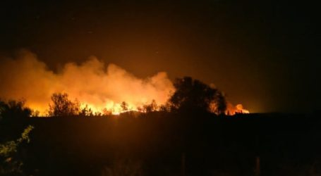 Συνολικά 15 πυρκαγιές σε 48 ώρες στον Έβρο: Εξετάζεται το ενδεχόμενο εμπρησμού