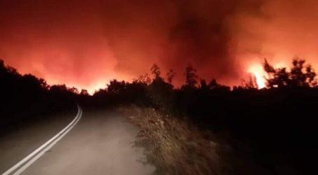 Έκτακτη σύσκεψη της Πολιτικής Προστασίας Έβρου για την πυρκαγιά της Μελίας