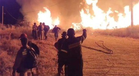 Οριοθετημένη η φωτιά στην περιοχή Βούντενη της Πάτρας