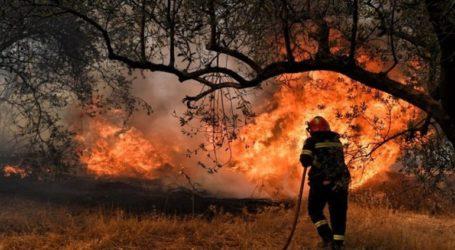 Συνελήφθη Σύρος για την πυρκαγιά στη Σάμο: Κατηγορείται για υποκίνηση μεταναστών
