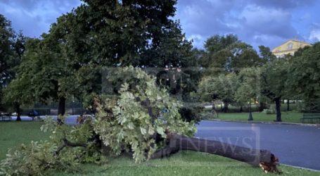 Ξεριζωμένα δέντρα και ζημιές σε σπίτια και καταστήματα