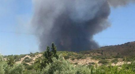 Πυρκαγιά σε δάσος της Λαυρεωτικής