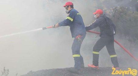 Αποκαταστάθηκε η κυκλοφορία των οχημάτων στην ευρύτερη περιοχή του Καρέα
