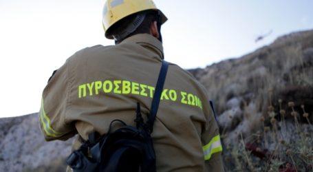 Υπό έλεγχο η πυρκαγιά στην Παλλήνη Αττικής