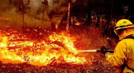 Στο έλεος πυρκαγιάς οι διάσημοι αμπελώνες της κοιλάδας της Νάπα