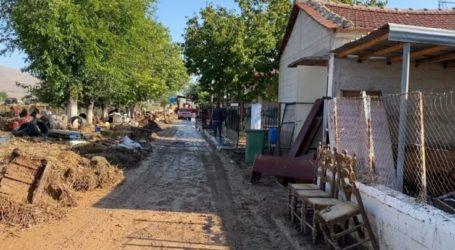 Σοκάρουν οι πρώτες εκτιμήσεις της καταστροφής στα Φάρσαλα: Ζημιές σε πάνω από 1000 σπίτια, ισοπεδώθηκαν 150.000 στρέμματα καλλιεργειών!