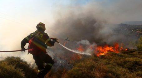 Βόλος: Πυρκαγιά από τσιγάρο οδηγού στον Σωρό