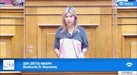 Ζέττα Μακρή στην Ολομέλεια: «Απαιτείται ενεργή συμμετοχή όλων μας στη διαμόρφωση του ψηφιακού μας μέλλοντος»