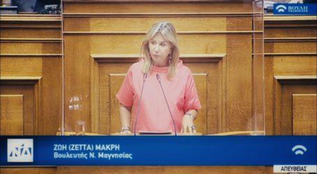 Ζέττα Μακρή:«Μεγάλες καταστροφές στις υποδομές του Δήμου Ζαγοράς – Μουρεσίου»