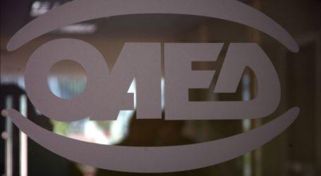 Τα 6 ανοικτά προγράμματα του ΟΑΕΔ για 35.600 νέες θέσεις εργασίας