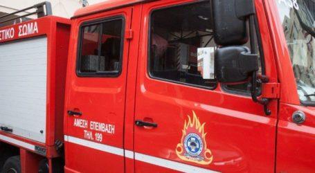 Διοικητικά πρόστιμα σε κατοίκους Μορφοβουνίου και Κτιμένης για πυρκαγιές