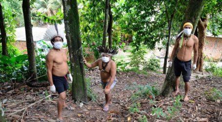 Για να αποφευχθεί η επόμενη πανδημία, ίσως χρειαστεί να κόβουμε λιγότερα δέντρα
