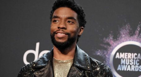 Chadwick Boseman: Ένα άγαλμα φόρο τιμής στο αστέρι του «Black Panther»