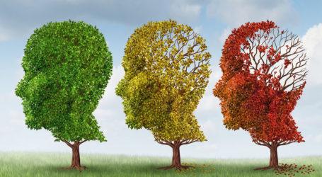 Δράσεις στην πόλη από την Alzheimer Λάρισας