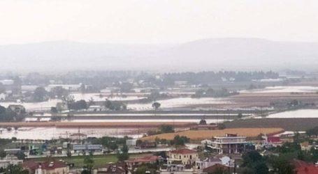 """Χωρίς νερό η πόλη των Φαρσάλων – Ένα μέτρο νερό """"έπνιξε"""" το αντλιοστάσιο της ΔΕΥΑΦ!"""