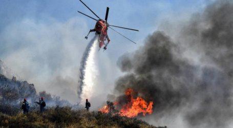 Μαγνησία: Υψηλός σήμερα ο κίνδυνος εκδήλωσης πυρκαγιάς