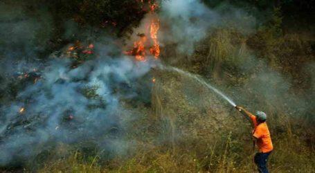 Ο δεκάλογος του Δήμου Ρήγα Φεραίου για την αποφυγή πρόκλησης πυρκαγιάς