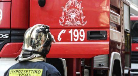 Βόλος: Φωτιά σε οικόπεδο στην Παγασών