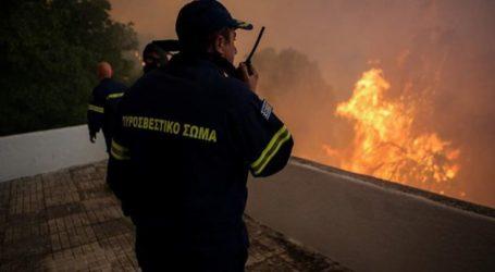 Μεγάλη φωτιά κοντά στο Ναρθάκι Φαρσάλων – Σε εξέλιξη επιχείρηση της Πυροσβεστικής