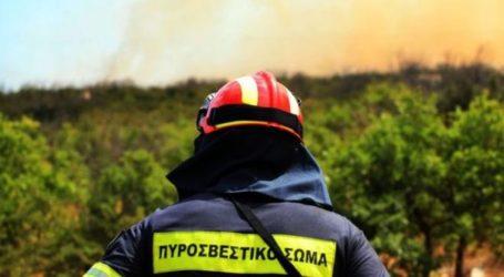 Ένορκη Διοικητική Εξέταση για τον νεκρό πυροσβέστη στον Αλμυρό