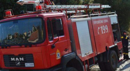 Λάρισα: Ξέσπασε φωτιά στο δρόμο Φαρσάλων-Βρυσίων