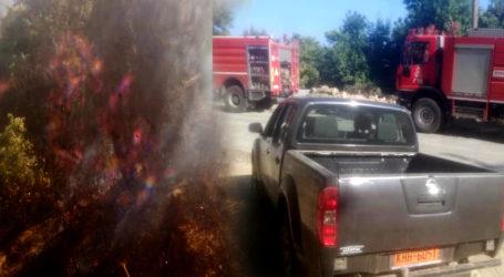 Φωτιά στη Ζαγορά – Κινητοποίηση της Πυροσβεστικής [εικόνες]