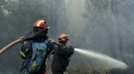 Λάρισα: Φωτιά πίσω από γνωστό ξενοδοχείο στον Αγιόκαμπο, λαχτάρησε κόσμο