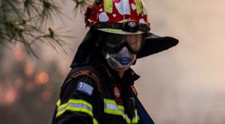 Στο «κόκκινο» ο κίνδυνος  πυρκαγιάς στο Πήλιο την Παρασκευή (03/09)