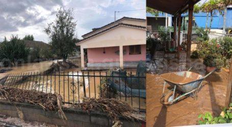 Σοκάρουν οι εικόνες από το Βασιλί Φαρσάλων: Βομβαρδισμένο τοπίο θυμίζει το χωριό, σε απόγνωση οι κάτοικοι