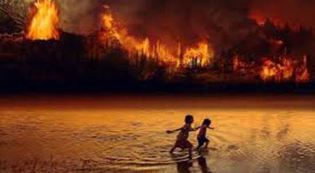 Οι πυρκαγιές φέτος είναι οι χειρότερες των τελευταίων δέκα χρόνων