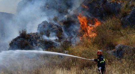 Σε εξέλιξη η πυρκαγιά στις Βολίμες Ζακύνθου
