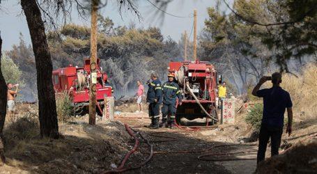 Οριοθετήθηκε η μεγάλη πυρκαγιά στην περιοχή των Βολιμών