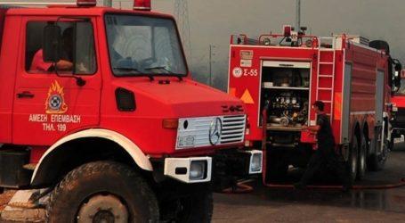 Φωτιά σε δασική έκταση στην περιοχή Χρυσοκελλαριά στη Μεσσηνία