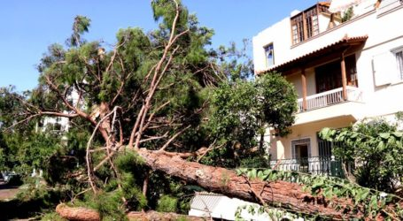 Αίτημα να κηρυχθεί ο Δήμος Ηρακλείου Αττικής σε κατάσταση έκτακτης ανάγκης λόγω της κακοκαιρίας