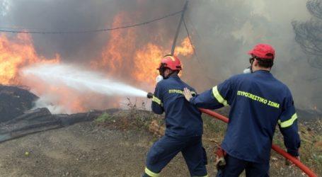 Υπό μερικό έλεγχο η πυρκαγιά στη Μικροκώμη