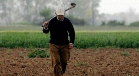 """Εγκρίθηκε η πίστωση για τους πληγέντες αγρότες του """"Ιανού"""""""