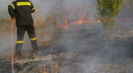 Φωτιά σε χόρτα, πλαστικά και σκουπίδια στον Περιφερειακό δρόμο του Βόλου