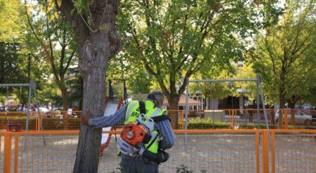 Εξόρμηση της Υπηρεσίας Καθαριότητας του Δήμου Λαρισαίων στην Ανθούπολη (φωτο)