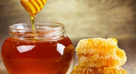 Προστατεύοντας τις μέλισσες και αντιμετωπίζοντας τη νοθεία στο μέλι