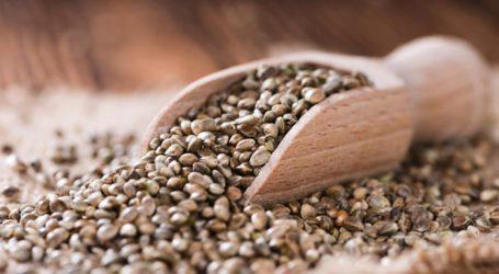 Δέματα με ύποπτους σπόρους φτάνουν σε σπίτια Βολιωτών! – Τι πρέπει να κάνουν οι παραλήπτες