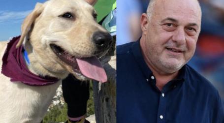 Χάθηκε ο σκύλος του Αχιλλέα Μπέου [εικόνες]