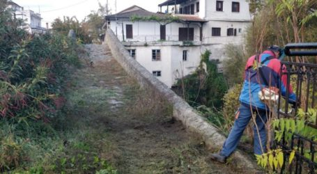 Κλαδεύσεις και αποψιλώσεις κοινόχρηστων χώρων στον Δήμο Ελασσόνας