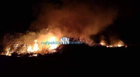 Μεγάλη πυρκαγιά στην περιοχή του Πούντου