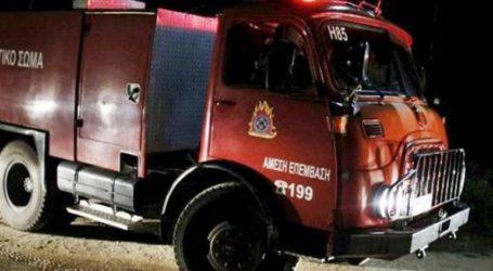 Φωτιά σε εκκοκιστήριο στη Βοιωτία