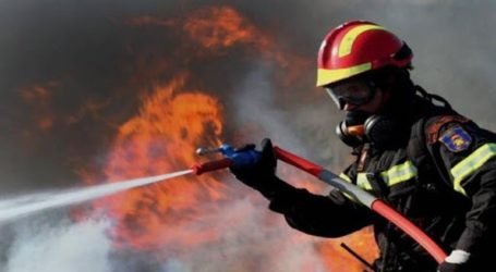 Πυρκαγιά σε δασική έκταση στα Μέγαρα Αττικής