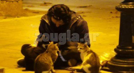 Άστεγος στην Κηφισιά φροντίζει αδέσποτες γάτες μέσα στην πανδημία