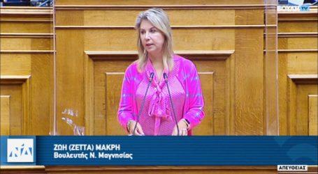 Ζέττα Μακρή: «H ορθή λειτουργία των μηχανισμών της δικαιοσύνης εχέγγυο για την αξιοπρεπή επιβίωση των πολιτών»